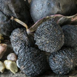 Juodojo riešutmedžio